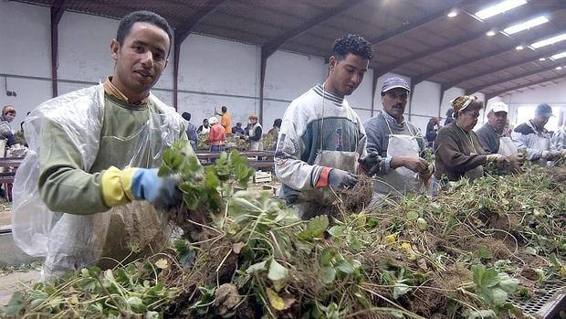 إعانة العمال المتأثرين بفيروس كورونا