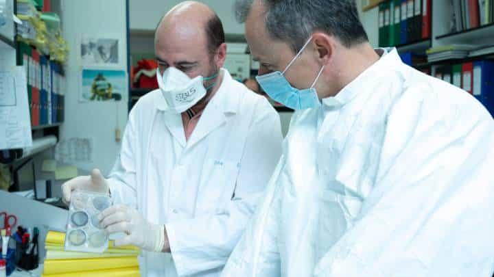 لقاح إسبانيا ضد فيروس كورونا