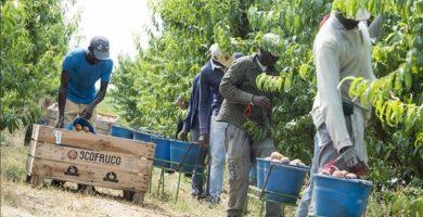 ظروف العمال الأجانب في إسبانيا