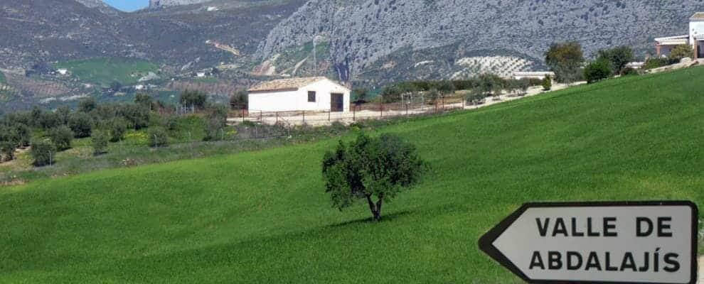 بلدة عبد العزيز